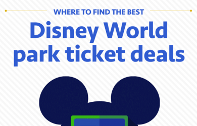 ticketpricessquare 2 390x250 - The best Disney World tickets for 2017