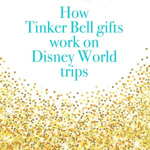 How To Do Tinker Bell Gifts At Disney World
