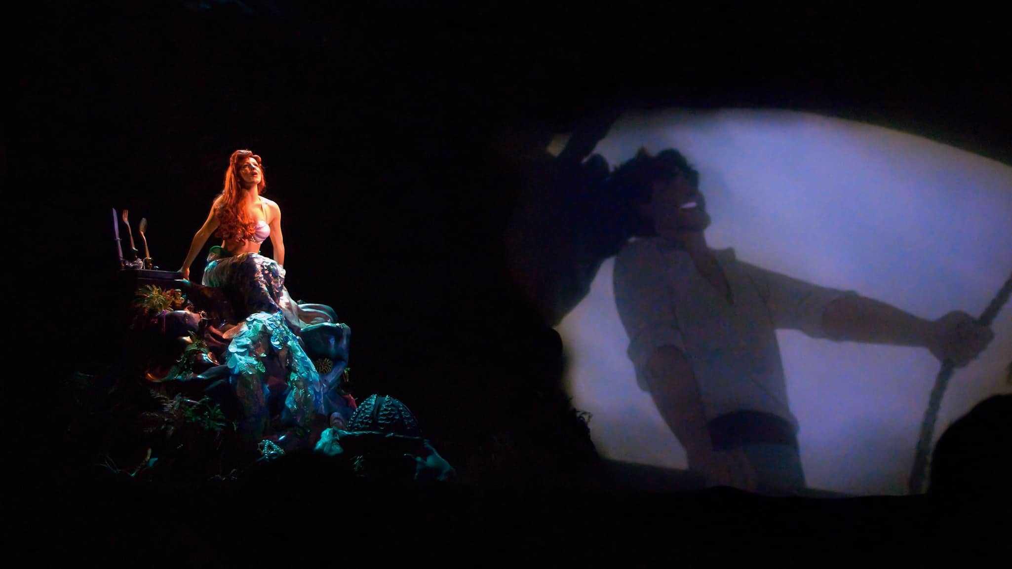 Voyage of Little Mermaid