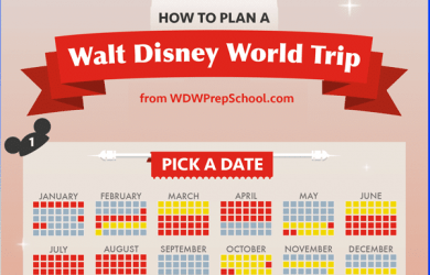 How to plan a Walt Disney World trip infographic