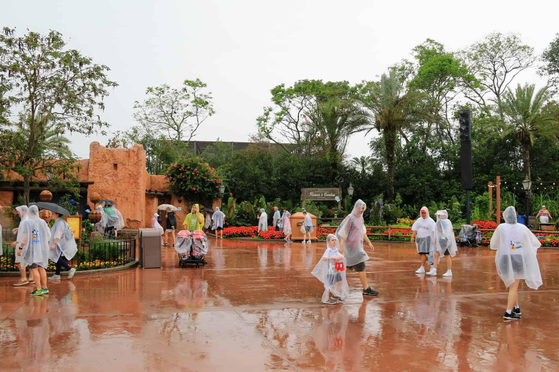 Rain in Epcot