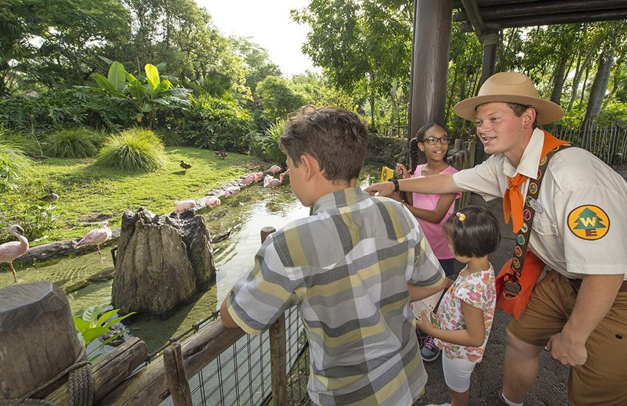 wildernessexplorers - Free/cheap things to do with kids at Disney World