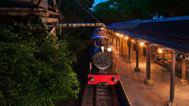 Wildlife Express Train (re-opening Summer 2019)